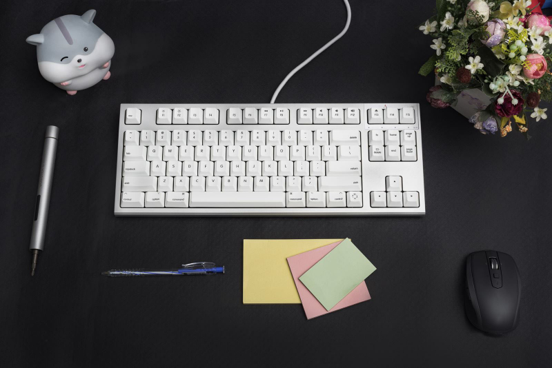 Bàn phím cơ Realforce R2 Silent APC for Mac