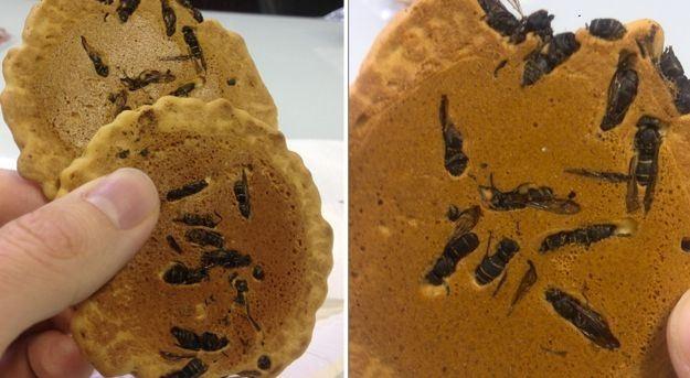 Bánh quy ong vò vẽ ở Nhật Bản