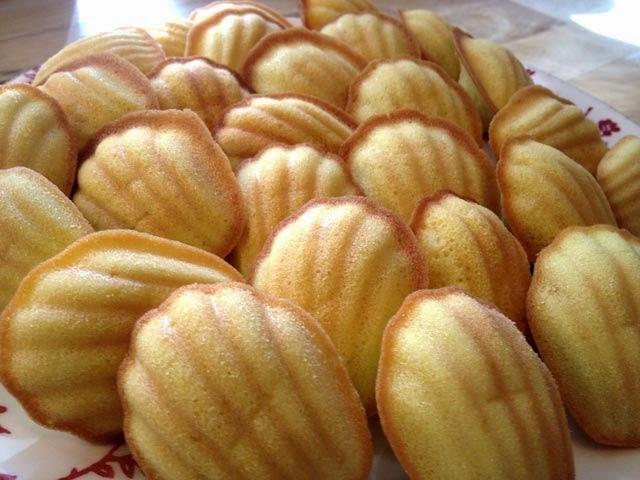 Bánh vỏ sò Maddalene