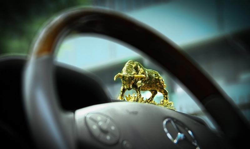 Bảo vệ xe bằng biểu tượng tê giác