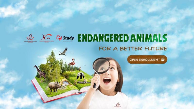 BCIS - Bilingual Canadian International School