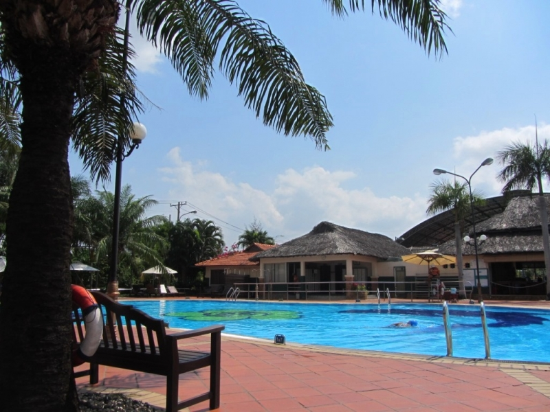 Bể bơi Văn Thánh có ghế gỗ và hàng dừa xanh