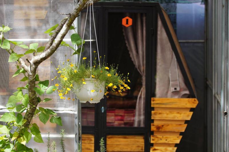 Bee Inn homestay Dalat