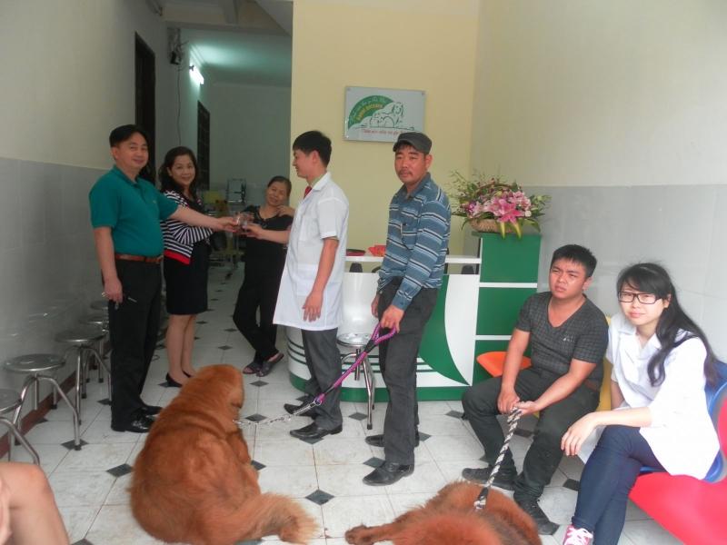Nơi chăm sóc sức khỏe và các dịch vụ cho thú cưng