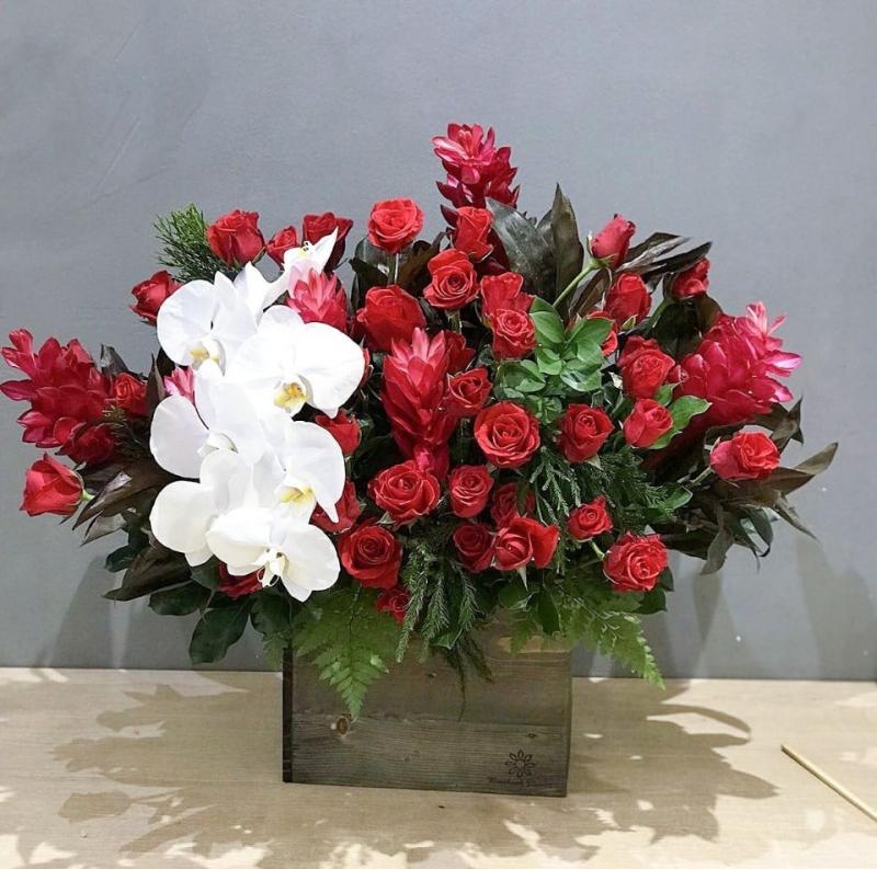 Hoa chậu tại Benthanh Flower sẽ khiến bạn cảm thấy vui vẻ cả ngày
