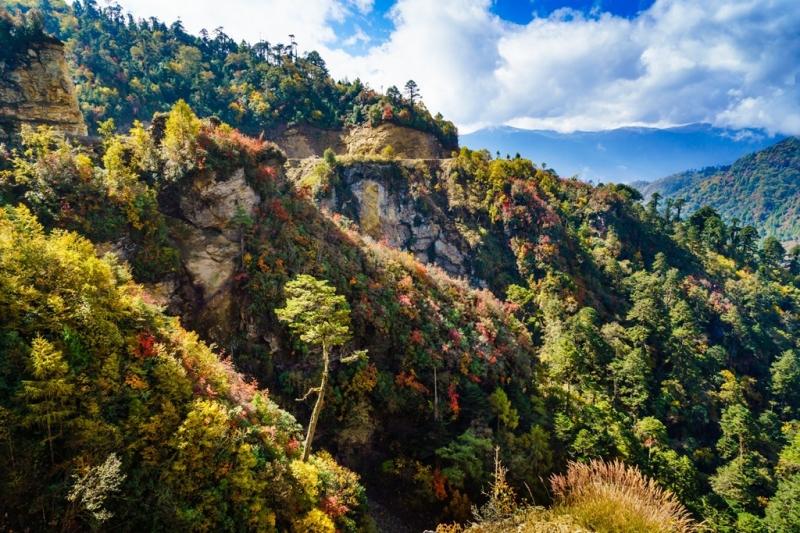 Đến Bhutan, du khách được chìm đắm trong khung cảnh xanh mát.