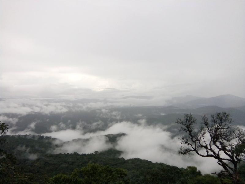 Không gian mây phủ trắng xóa nhìn từ đỉnh núi