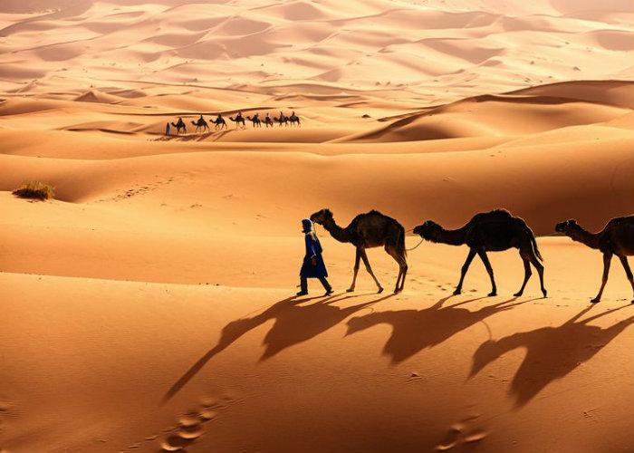Biển cát ở sa mạc Sahara