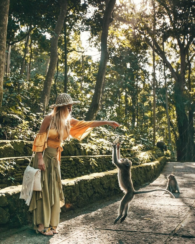 Rừng khỉ Ubud