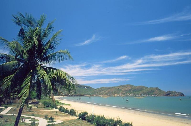 Biển Quy Hòa (nguồn: Internet)
