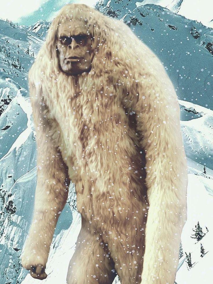 Bigfoot/Yeti