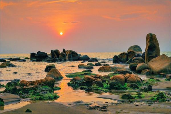 Rêu xanh Cổ Thạch - Bình Thuận