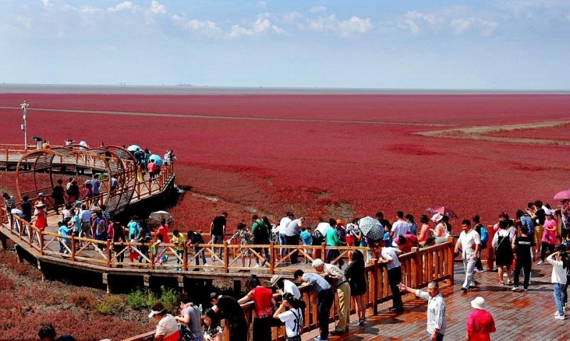 Bờ biển đỏ, Liêu Ninh, Trung Quốc