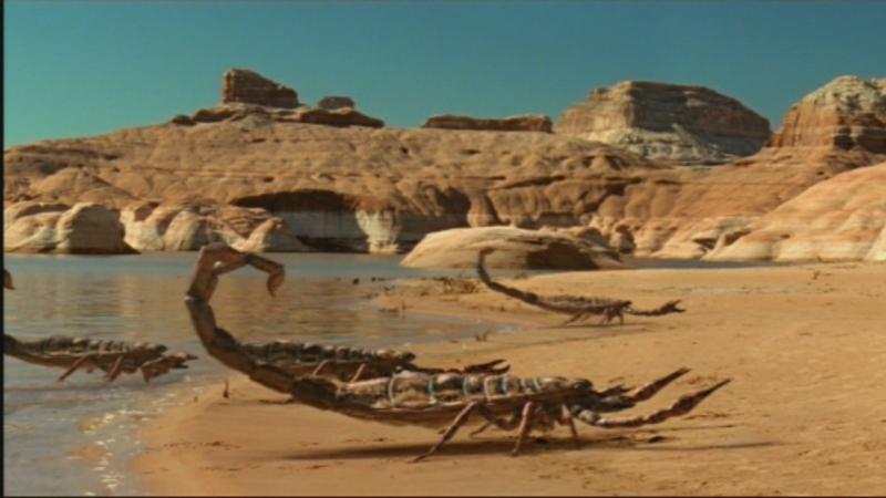 Bọ cạp biển khổng lồ lớn hơn cả con người
