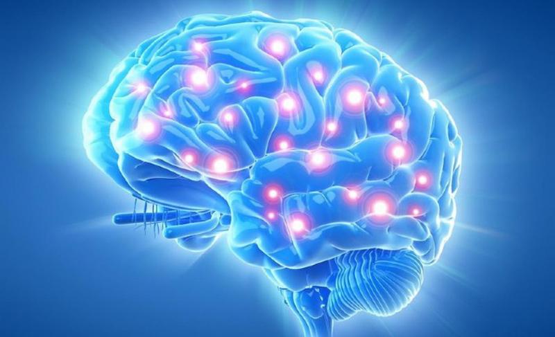 Bộ não sẽ trở nên bé hơn