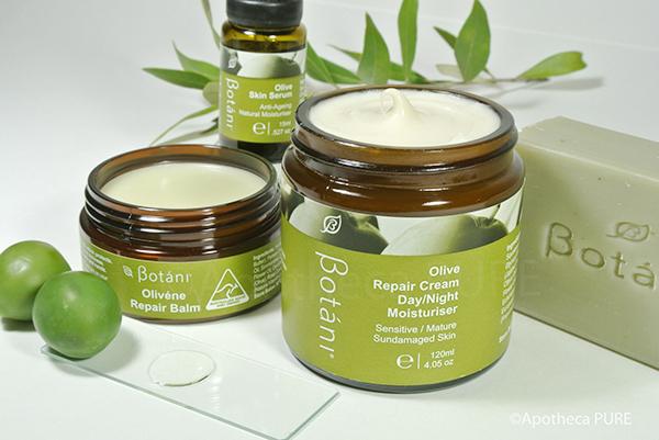 Botáni Olive Repair Cream Day/Night Moisturiser
