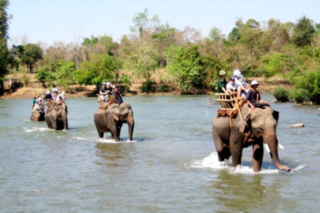 Du khách sẽ được cưỡi voi khi đến tham quan du lịch Buôn Đôn