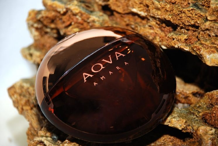Bvlgari Aqva Amara phong độ, phóng khoáng