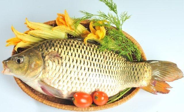 Ăn cá tốt cho người muốn giảm cân.