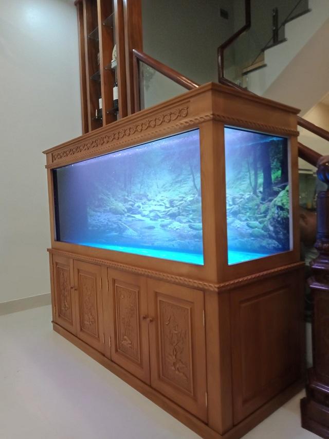Cá Cảnh Hến
