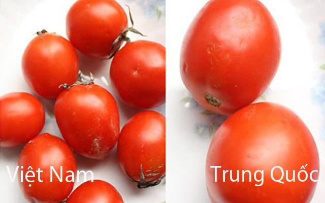 Cà chua Trung Quốc thường không có cuống