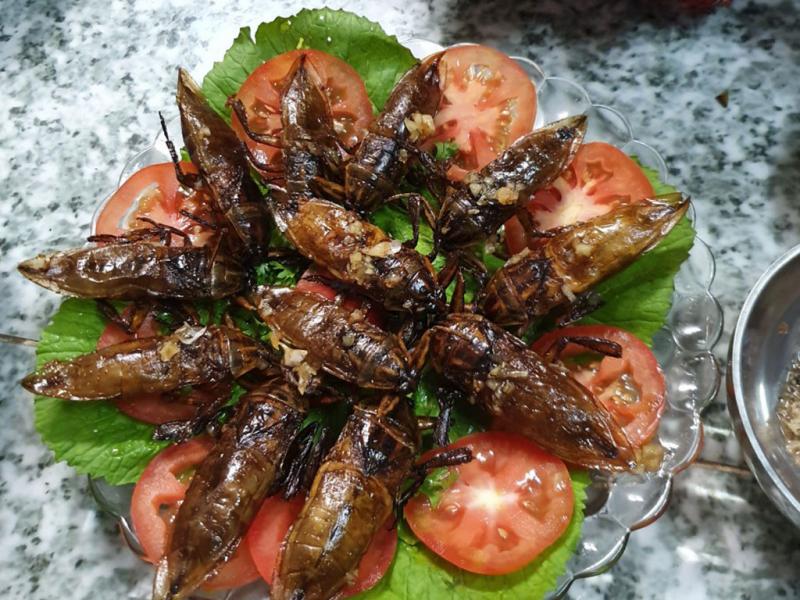 Bánh cuốn cà cuống đặc sản Hà Nội