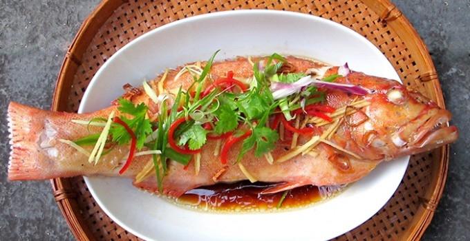 Cá mú đỏ của Côn Đảo cực kỳ thích hợp để chế biến thành các món sốt