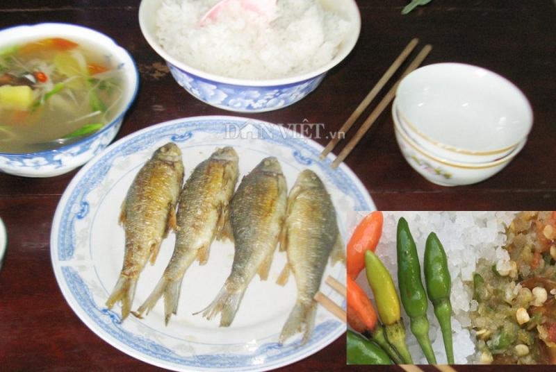 Cá niêng nướng món ăn dân dã của người dân miền núi Quảng Ngãi