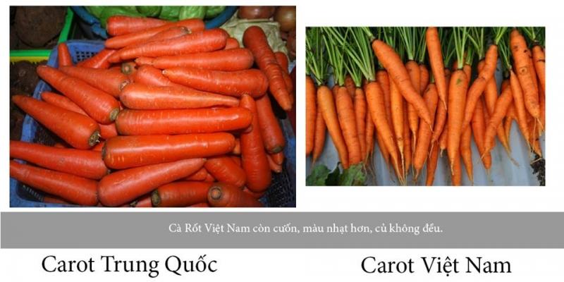 Khác biệt rõ rệt giữa cà rốt Việt Nam và cà rốt Trung Quốc