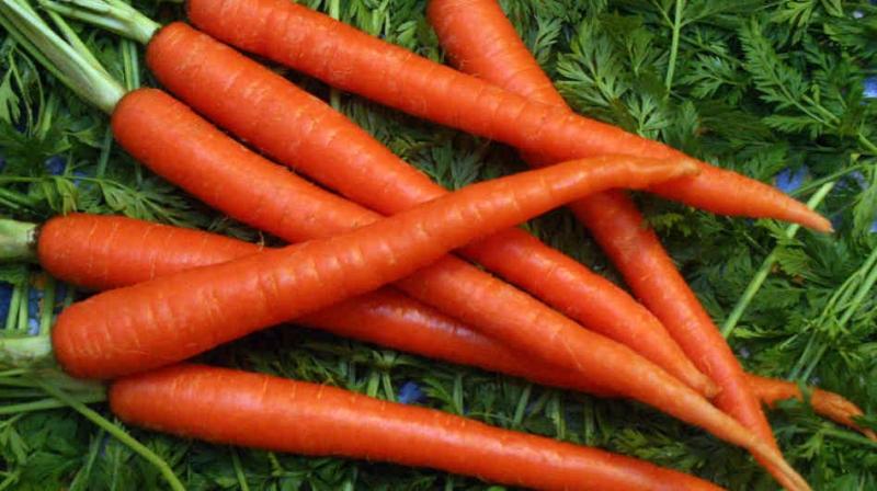Cà Rốt dùng cho những người bị cao huyết áp, viêm thận, tiểu đường, táo bón mạn tính, phụ nữ da thô và khô...
