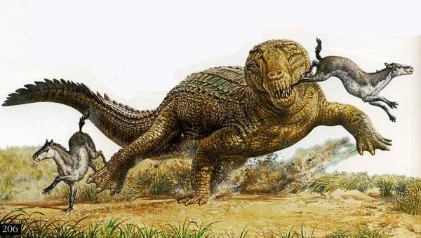 Là thành viên khổng lồ trong gia đình cá sấu với độ dài  23 feet (7 m)