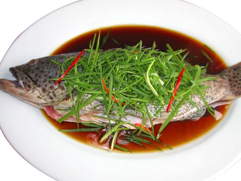 Cá song biển có thể chế biến được nhiều món ăn bổ dưỡng như: gỏi cá song, cá song hấp xì dầu, cá song nấu canh chua, lẩu cá song…