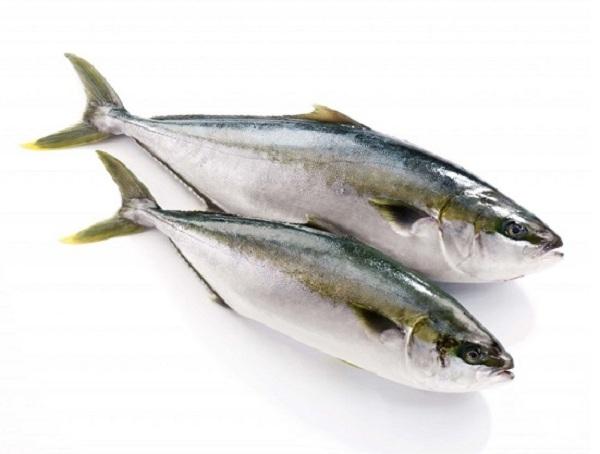 Ăn cá biển giúp phòng ngừa ung thư