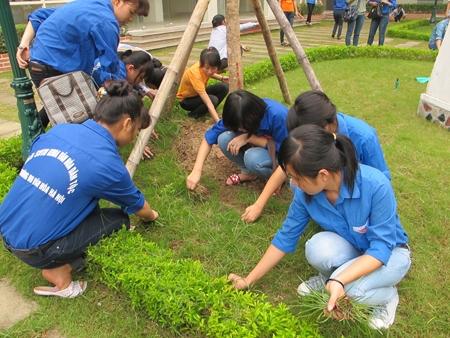 Các hoạt động tình nguyện ý nghĩa