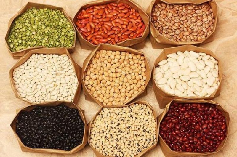Các chất dinh dưỡng chứa trong đậu rất lớn