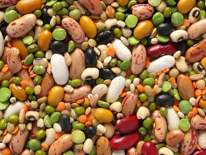 Các loại hạt họ đậu