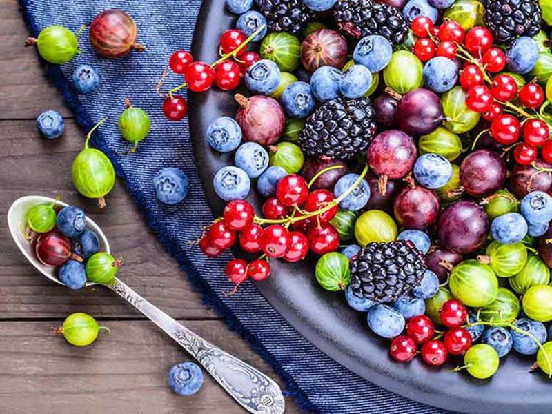 Các loại quả mọng nước