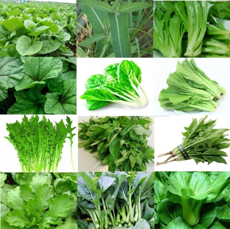 Các loại rau có màu xanh đậm