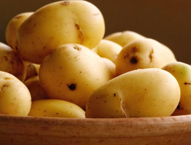 Khoai tây cũng là một phương thuốc giúp bạn tránh khỏi việc bị dị ứng