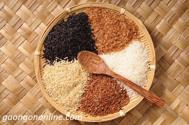 Top 7 cách phân biệt gạo giả và gạo thật đơn giản và chính xác nhất