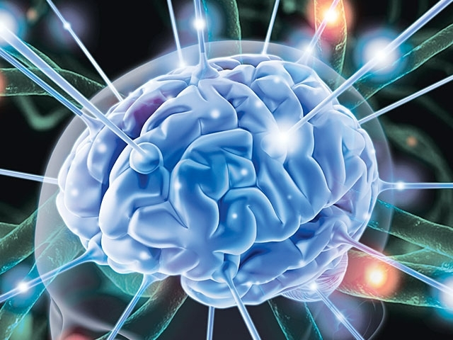 Cải thiện hoạt động não bộ