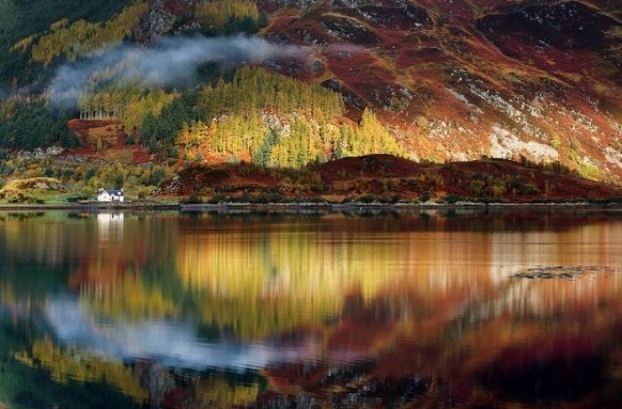 MÙA THU CÔNG VIÊN Cairngorms-scotland-124790