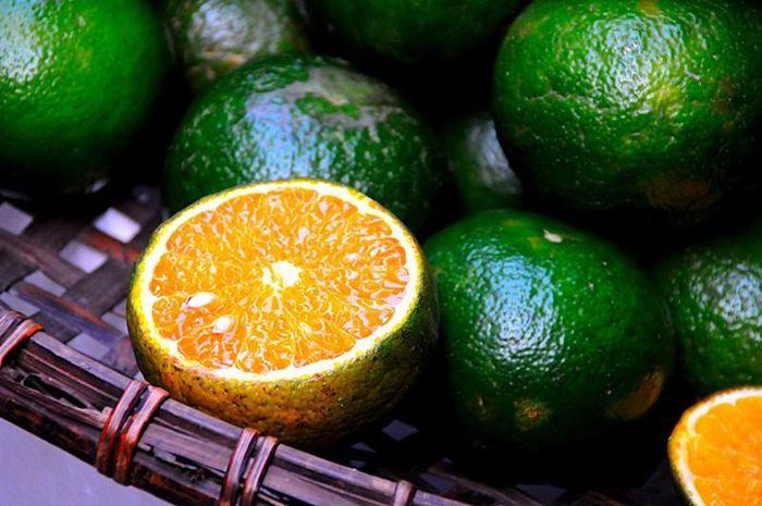 Nên chọn những quả tròn đều, không cần quá to, cầm chắc tay, đáy quả cam có màu vàng là cam già và chín