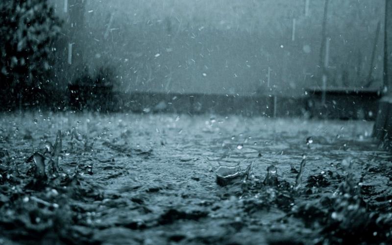 Lúc ấy những cơn mưa chỉ mang tới niềm vui