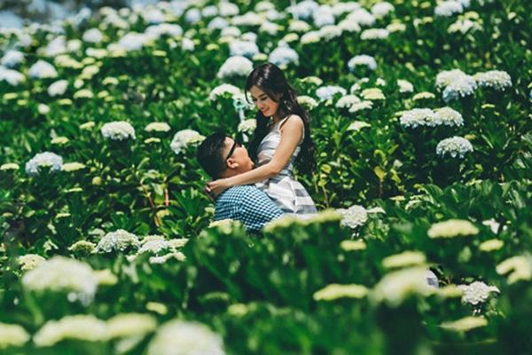 Cẩm tú cầu luôn là loài hoa được nhiều bạn trẻ yêu thích