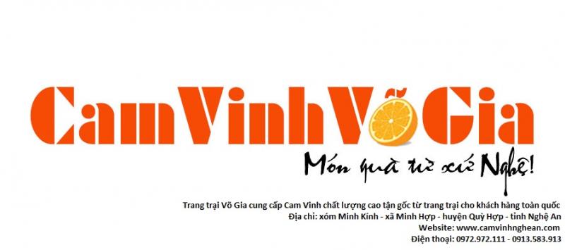 Cam Vinh Quỳ Hợp - Trang Trại Võ Gia
