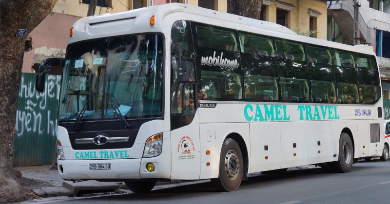 Xe Camel Travel
