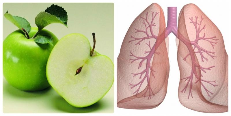 Cân bằng sức khỏe phổi
