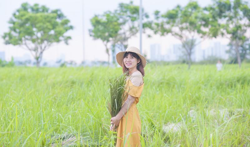 Cánh đồng cỏ lau Cát Lái