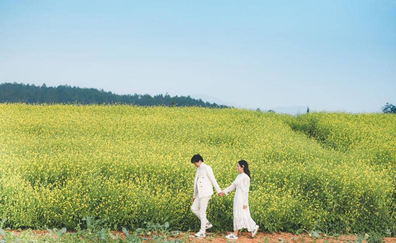 Ảnh tình nhân lãng mạn tại cánh đồng hoa cải vàng Đà Lạt